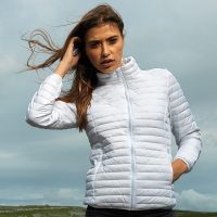Women's tribe fineline padded jacket